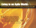 Living in an Agile World E-Book